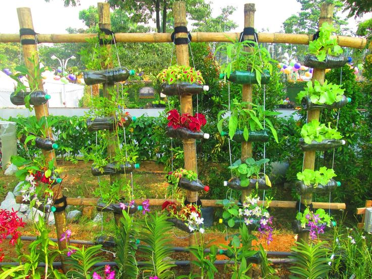 Recycled Plastic Landscaping Timbers : Bottle garden recycled plastic bottles crafts diy