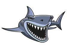 Опасность нападения акул роялти-фри стоковое изображение