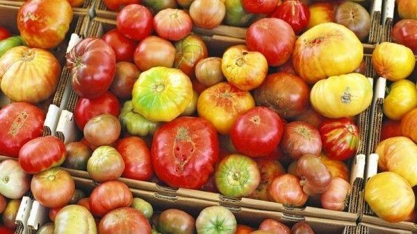 Na konci léta nám na zahrádkách zbývá hodně úrody. Rajčata, papriky, cukety…