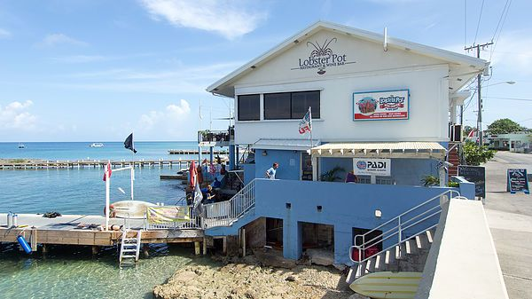 The Lobster Pot Dive Center is a historic Grand Cayman Dive Shop and is conveniently located near the cruise ship terminal. The friendly staff will be happy http://www.deepbluediving.org/hollis-dg03-dive-computer-review/