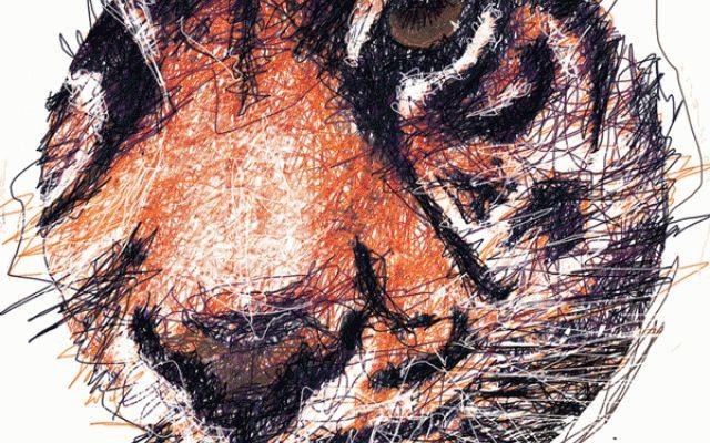 Felines, serie di illustrazioni  grafiche ispirate ai grandi felini Felines è una serie di sei illustrazioni realizzate da Mirabilia per delle tshirt, ognuna delle 6 grafiche ritrae alcuni dei grandi felini : leone, leopardo, tigre, ghepardo, puma ed inoltre il gatto #felini #grafica #illustrazione #design