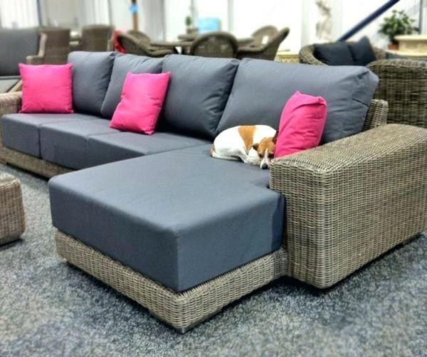 Pet Friendly Furniture Design Cheerful