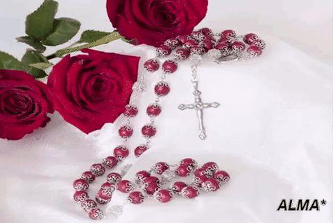 """Rosario significa """"corona de rosas y, tal como lo definió el propio San Pío V, """"es un modo piadosísimo de oración, al alcance de todos, que consiste en ir repitiendo el saludo que el ángel le dio a María; interponiendo un Padrenuestro entre cada diez Avemarías y tratando de ir meditando mientras tanto en la Vida de Nuestro Señor"""".  Read more: http://www.ewtnnoticias.com/noticias-catolicas/noticia.php?id=33650#ixzz4M8CmZ4iD"""