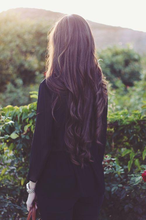 hair, long hair, and brunette image