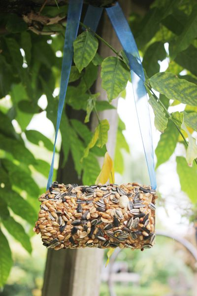 Bird Feeder DIY / Kids Corner - DIY Preschool Style! | Vintage Rose Brocante