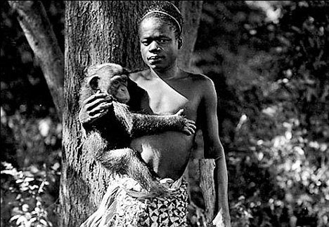 Caged in the human zoo: The shocking story of the young pygmy warrior put on show in a monkey house - and how he fuelled Hitler's twisted beliefs