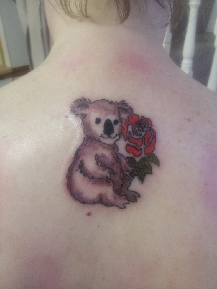 My Koala And English Rose Tattoo To Mark My Emigration To -6681