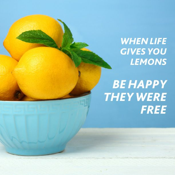 """""""Do you have a lemon tree? Why not make some lemonade and share the love: --squeeze 3/4 cup of lemon juice and set aside -Boil 3/4 cup of sugar in one cup of water and set aside to cool, or if you're in a hurry, add an ice block until it's room temperature -Add both to a jug that holds one litre of liquid and fill to the brim with still or fizzy water -Add ice to a glass and pour over pure goodness. Ahhh"""""""