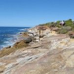 Hiking through Royal National Park on Bundeena to Jibbon Head Circuit bushwalking track