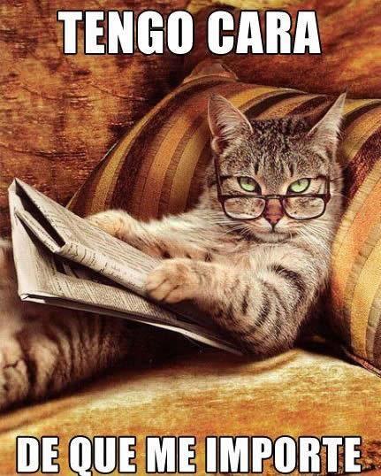 videoswatsapp.com videos graciosos memes risas gifs graciosos chistes divertidas humor http://ift.tt/2p6NdxY