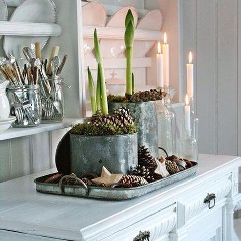 #december#feestmaand#amaryllis#bollen#candlelight#kaarslicht#cosy#gezellig