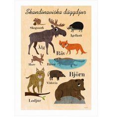 Poster SKANDINAVISKA DÄGGDJUR - Ingela Arrhenius - Favoritsaker AB