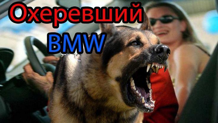 ОХЕРЕВШИЙ BMW