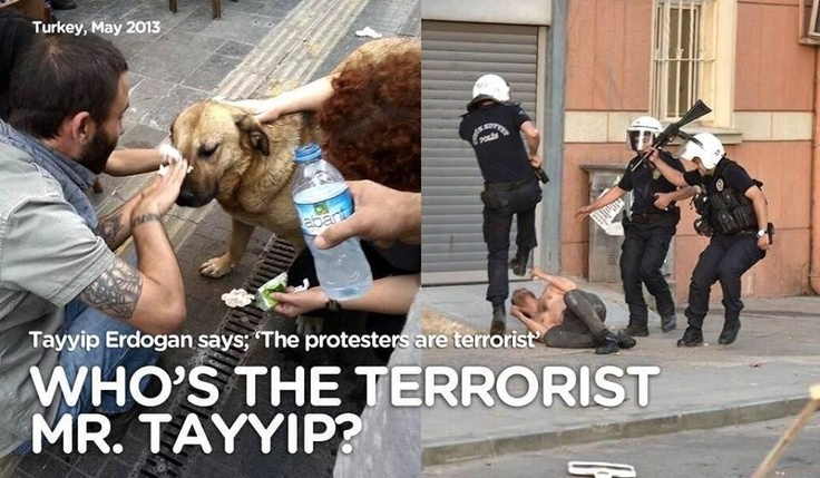 Who's the terrorist? Erdoğan called the protestors terrorists...clearly they are the evil ones.