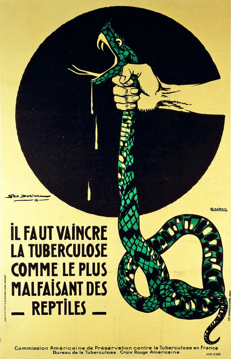"""""""The strangling of a poisonous snake, representing the crushing of #LogoCore"""