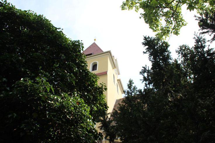 Diese Kirche bzw. deren Geschichte lässt sich bis auf das Jahr 1217 (Schenkung von Großzschocher und Gautzsch an das Thomaskloster) nachvollziehen. Der Turmchor mit seinen romanischen Bögen stammt aus dieser Zeit. Im Jahre 1450 wurde der gotische Chorraum gebaut und das Gotteshaus zeigt weitere Aus- und Umbauten bis in das 20. Jahrhundert. Interessant sind hier die Kanzel aus dem Jahre 1696, d ...