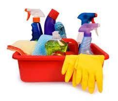 Nettoyage vs Désinfection? Pourquoi le personnel des refuges doit savoir faire la difference! - Programme Refuge Royal Canin