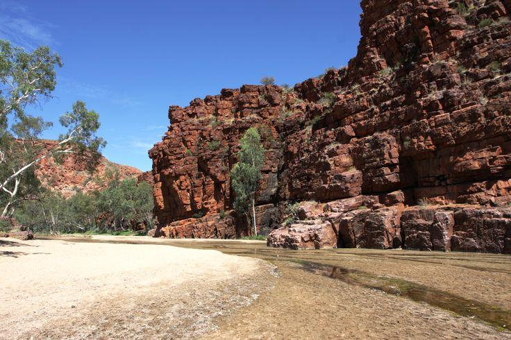Visiting the Red Centre?  The MacDonnell Ranges, both East and West should be on your agenda.  Short and longer walks to explore gorges, gaps and beautiful views.  This is one of our favourites, Trephina Gorge.  Have you been here? #NTAustralia #traveloutbackaust