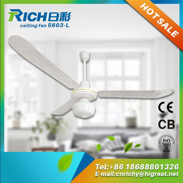 122 best ceiling fan images on pinterest blankets ceiling fan china supplier lastest household promotion gift decorative ceiling fan aloadofball Gallery