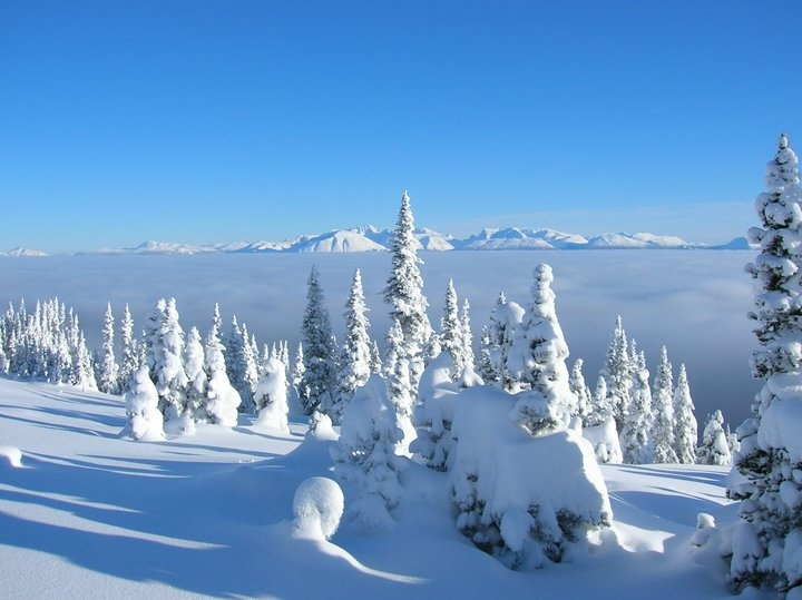 Snowboarding  - Hudson Bay Mnt. Smithers BC, Canada