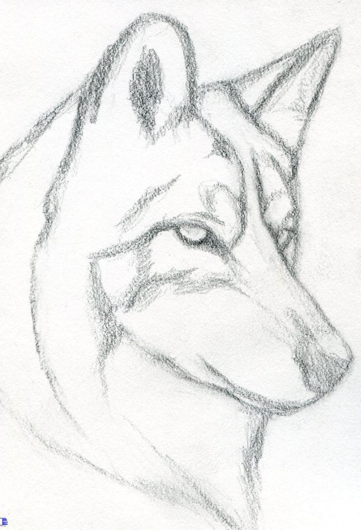 20 Easy Drawing Tutorials für Anfänger   Coole Sachen zum Zeichnen ...