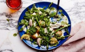 (Rotisserie Chicken) Warm Chicken Salad with Asparagus and Creamy Dill Dressing