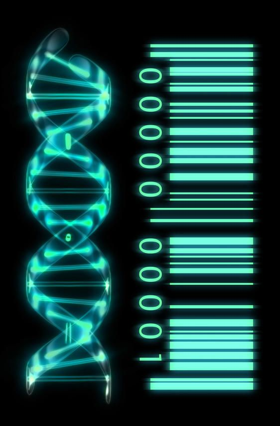 You Dont Own Your Own Genes: Researchers Raise Alarm About Loss of Individual Genomic Liberty Due to Gene Patents