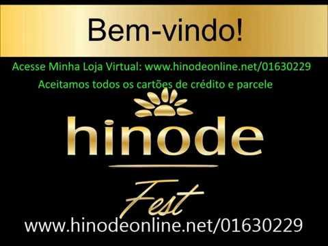 Hinode Sobre a Loja Virtual