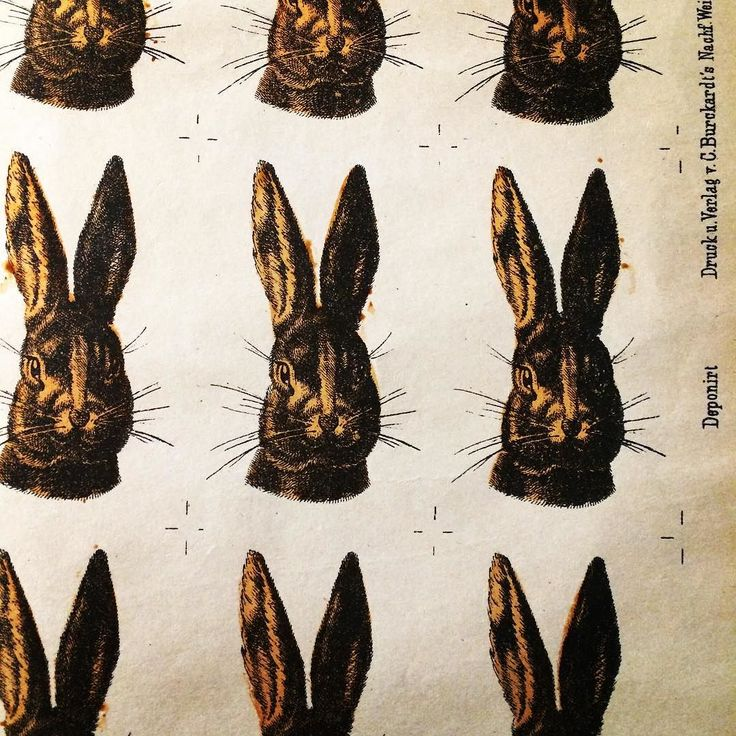 Lapinous coucou #bunny #lapins #lithographie #lithography #Wentzel