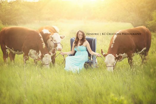 Nolles Cattle Company of Bassett, NE. Located in the Sandhills of northcentral Nebraska! Fancy Hereford Cattle For Sale