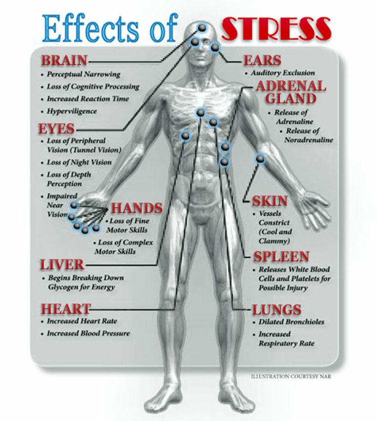 effects of stress on memory The selective effects of emotional arousal on memory but the effects of a post arousal or post stress induction change when emotional items are included in the.