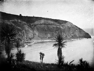 Purakanui Cliffs