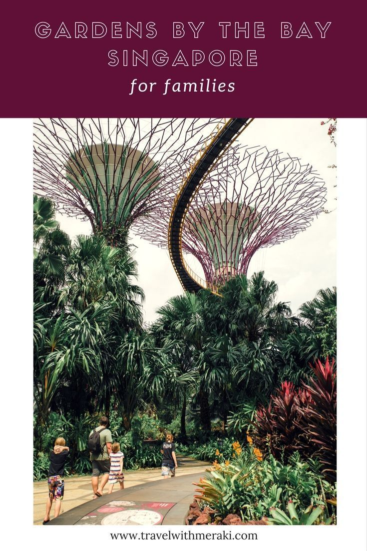 All You Need To Know For Your Visit To Gardens By The Bay In Singapore With