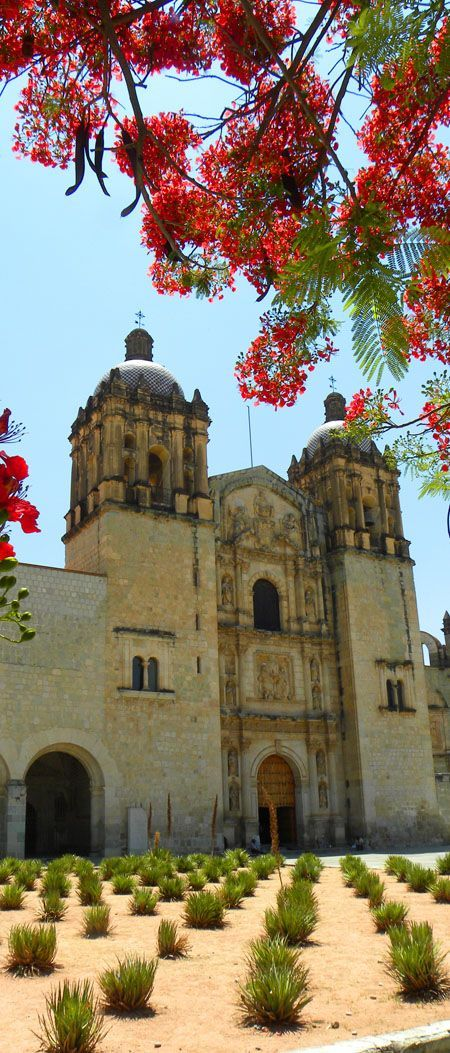 Santo Domingo church, Oaxaca, Mexico: http://bbqboy.net/photo-essay-the-colors-of-oaxaca/ #oaxaca #mexico