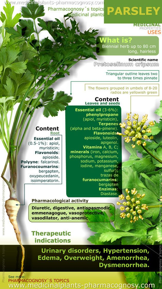 Apigenin, a compound in parsley is able to stop some breast cancer tumor cells from growing.  Parsley Health Benefits Infographic- Apigenin is most prevalent in parsley and celery, but can also be found in apples, oranges, nuts and other plant products.