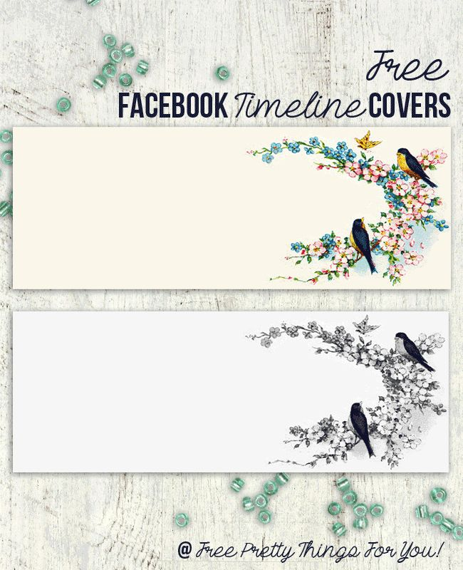 Free Vintage Bluebird Facebook Timeline Covers - Free Pretty Things For You