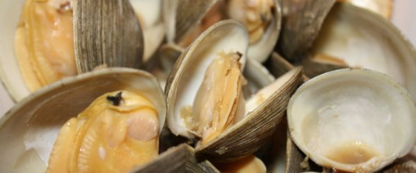 Steamed Clams Or Mussels Recipe - Genius Kitchen