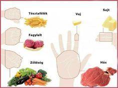 Az ujjaidon magyarázzuk el, mennyit kell enned! Ez jobb, mint bármely diéta! - EZ SZUPER JÓ