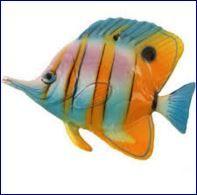 Sognare un pesce o dei pesci può assumere significati di vario tipo ma si deve ricordare che la simbologia del pesce è fortemente connessa a quella dellelemento che lo contiene ossia