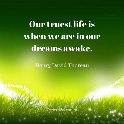 Thoreau Quotes: 25+ Best Thoreau Quotes On Pinterest