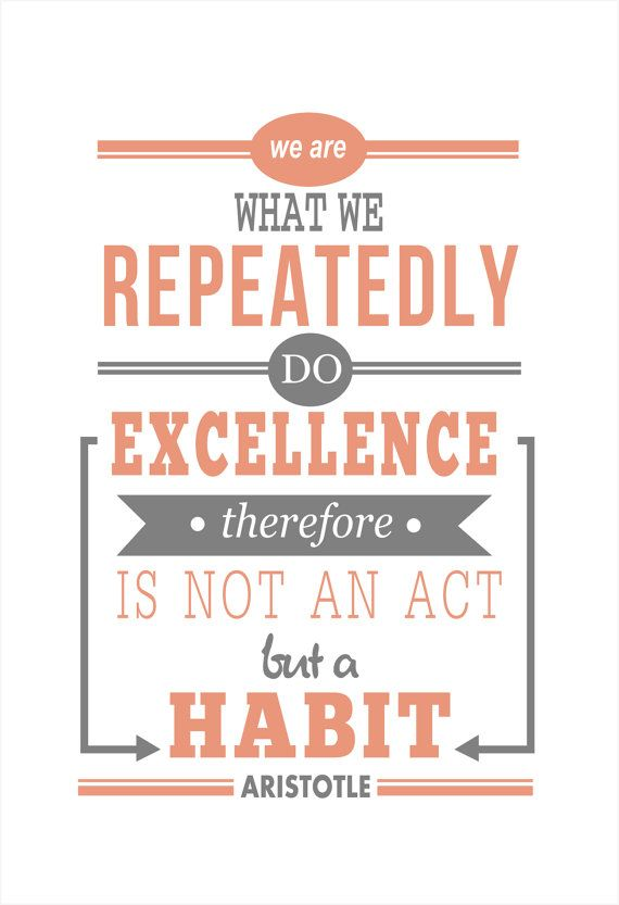 We are what we repeatedly do excellence is a habit by Inkpower, $8.00