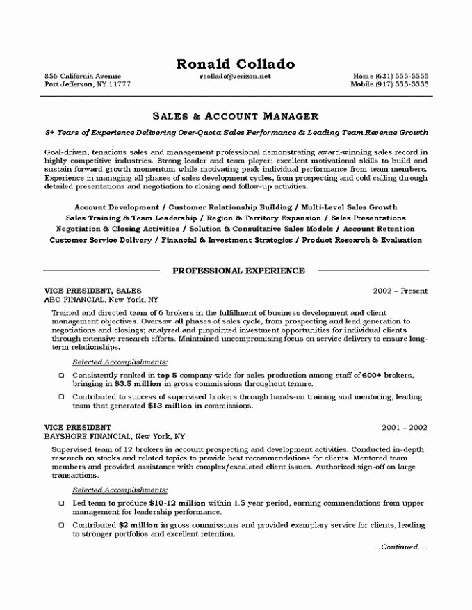 Awesome Vice President Of Sales Resume Sales Resume Sample Sales Resume Examples Sales Resume Job Resume Template