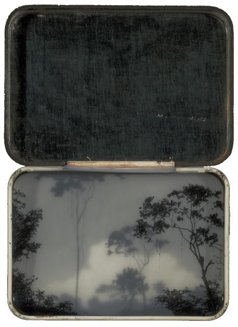 Brooks Shane Salzwedel: High Forest Tin. Hand drawn graphite on Duralar cast in layers of resin within a tin box.