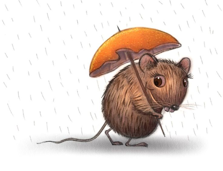 Wet Rat Speed Painting using Procreate App - Will Terry