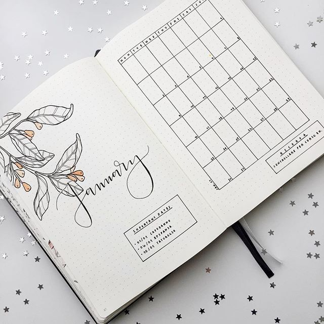 Instagram media by feebujo - My Bullet Journal is ready for January 2017 and yours? ⭐️