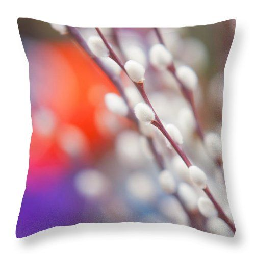 Jenny Rainbow Fine Art Photography Throw Pillow featuring the photograph Easter Willow Branch Of White Furry Catkins by Jenny Rainbow