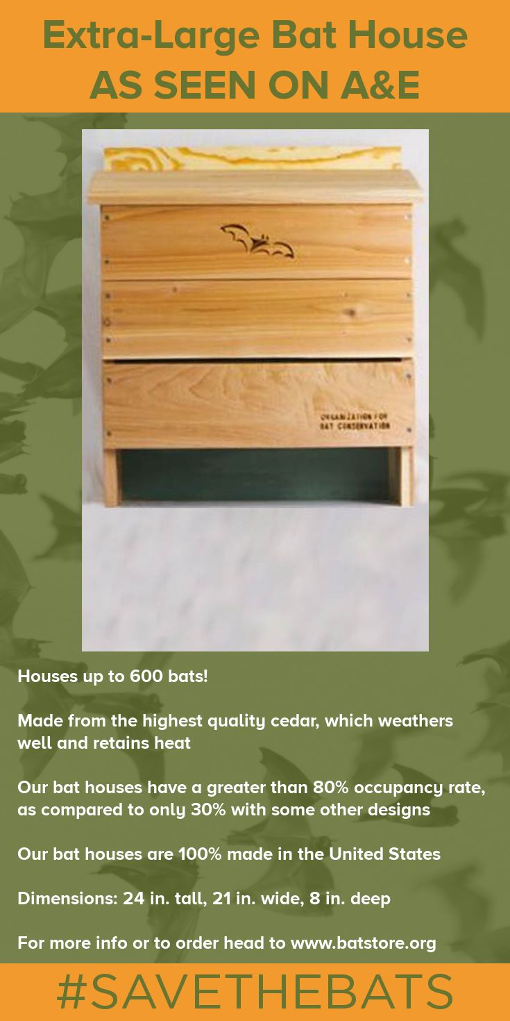 AS SEEN ON STORAGE WARS ON A&E TV! Invite a colony of up to 600 insect-eating bats into your yard with the OBC Extra-Large Bat House. This bat house has been designed by bat researchers in order to promote occupancy rates. #BatHouse #BatStore #Bats #Conservation #SAVETHEBATS