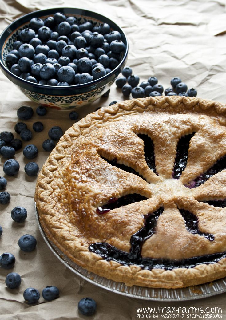 Homemade blueberry pie from Trax Farms' bakery.