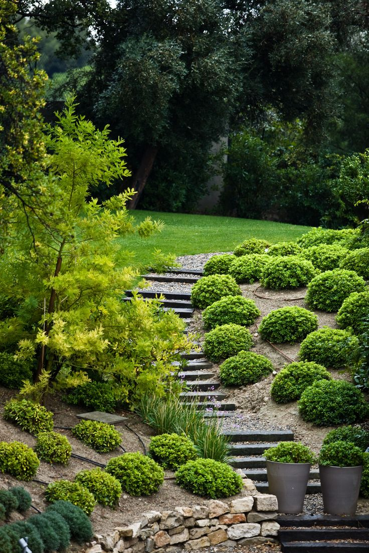 1000 Images About Hillside Gardens On Pinterest