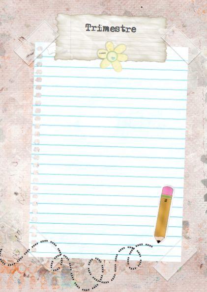 Pagina para indicar las anotaciones por trimestre